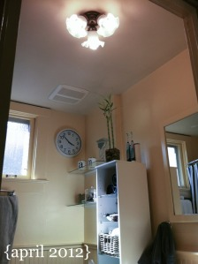 bathroom-light-april-2012.jpg