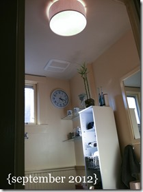 bathroom light september 2012