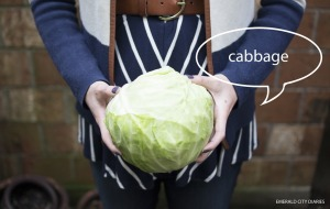 Project-Baby_Week-26_Cabbage_Final.jpg