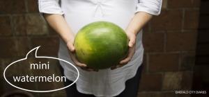Project-Baby_Week-37_Mini-Watermelon_Final.jpg