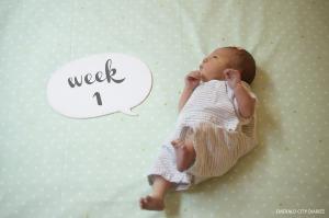 Eloise_Week-1_Final.jpg