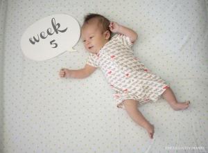 Eloise_Week-5_Final.jpg
