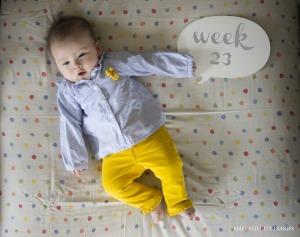 Eloise_Week-23_Final.jpg
